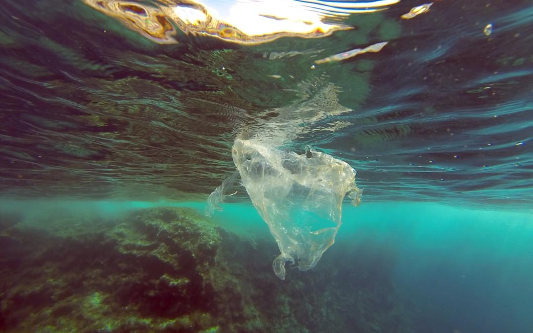 Leidiges Thema: Plastik