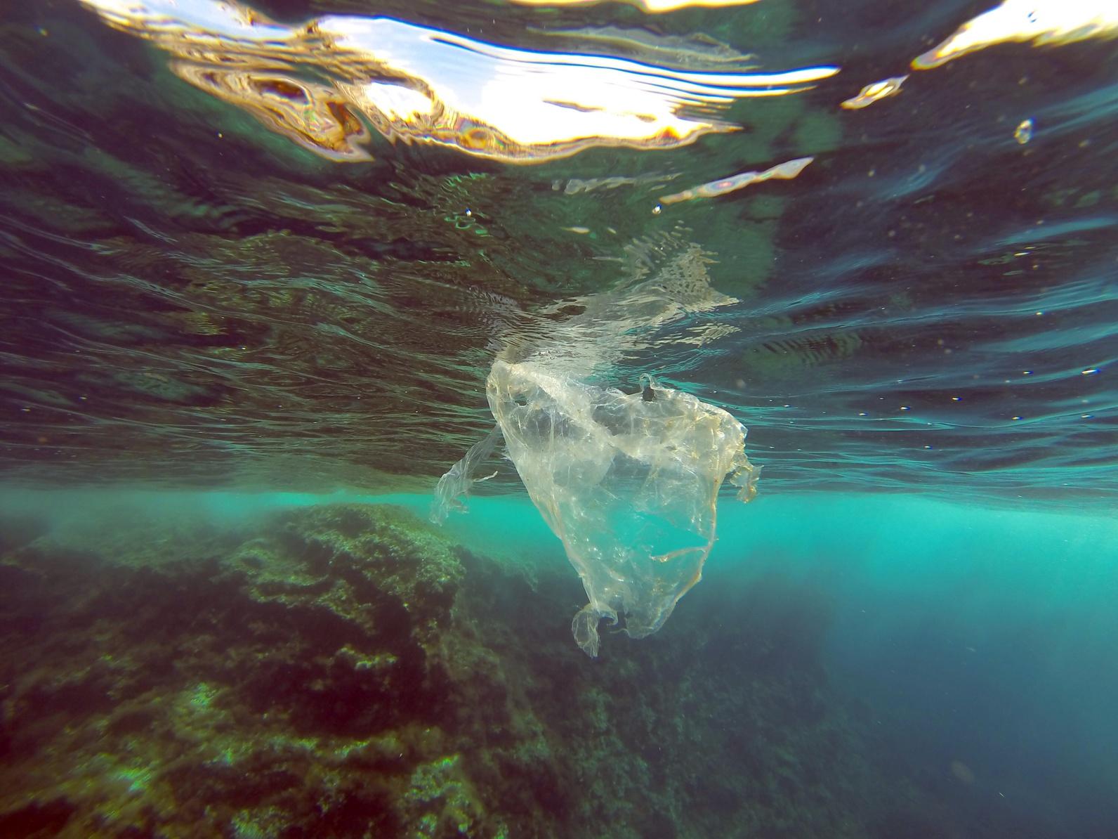 plastic plastik müll meer