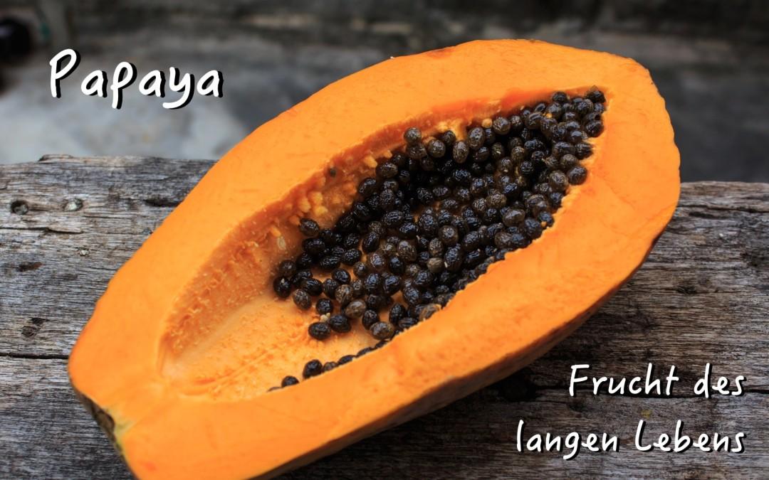 Die Frucht des langen Lebens