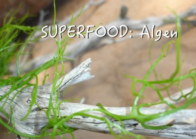 Chlorella-Algen – DAS Superfood :)