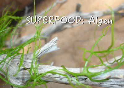 Chlorella-Algen – DAS Superfood :)